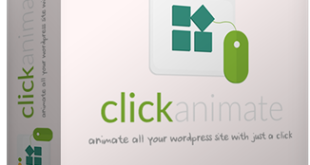 click animate review